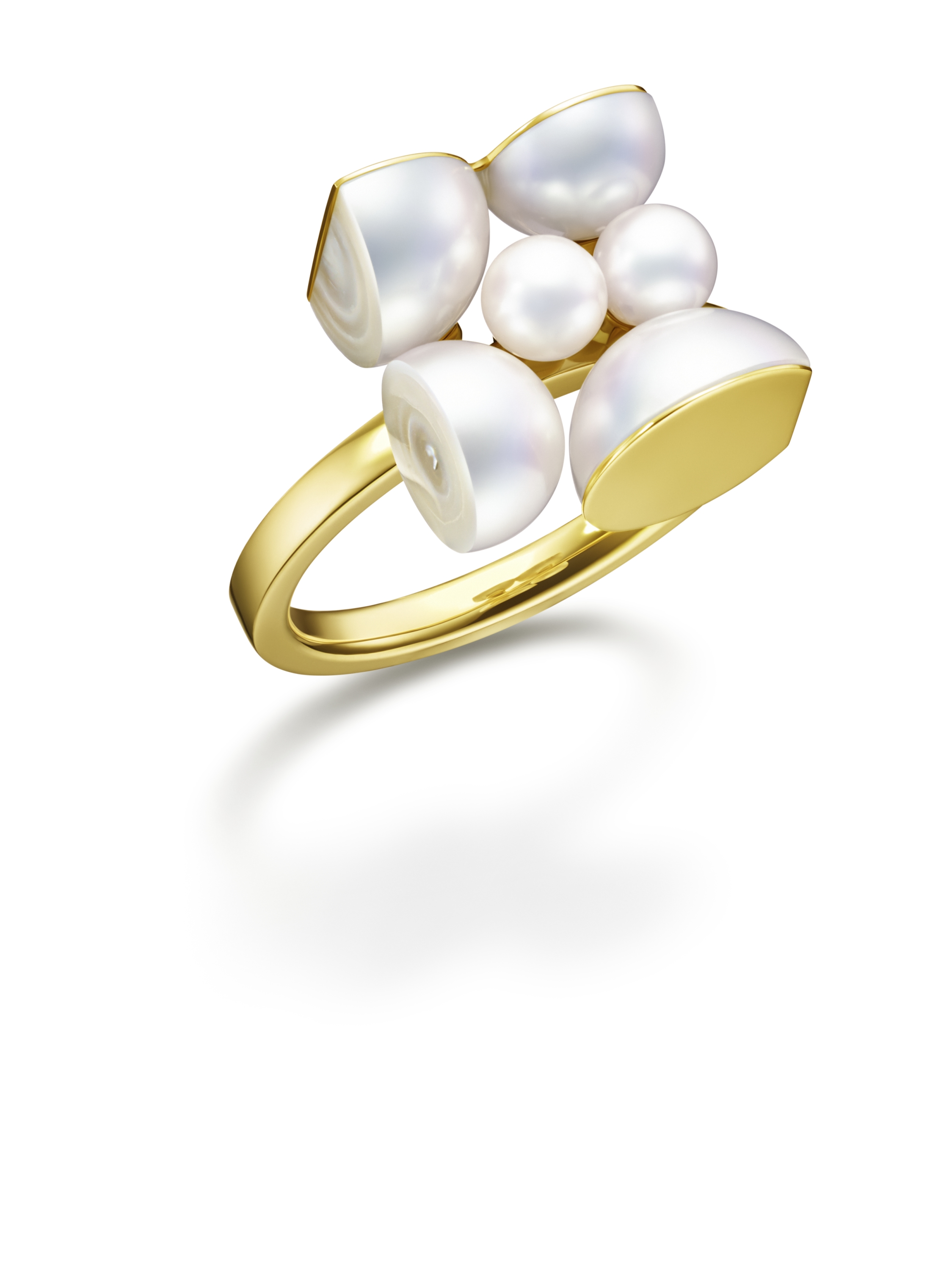 Segment Ring M/G Tasaki (Image courtesy of Melanie Georgacopoulos)